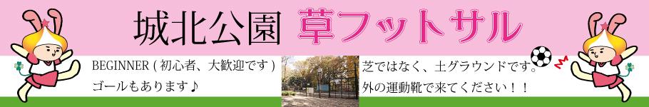 城北中央公園個人参加フットサル東京