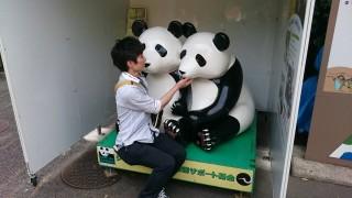 上野動物園 作り物のパンダと