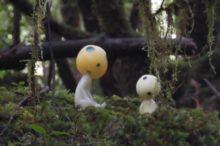 途中で合った森の妖精(こだま)
